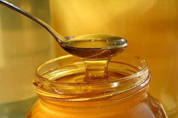 Εκπληκτικό! Έρευνα του Α.Π.Θ. εξέτασε 48 διαφορετικά ελληνικά μέλια. Δείτε ποιο μέλι είναι το καλύτερο για την υγεία!