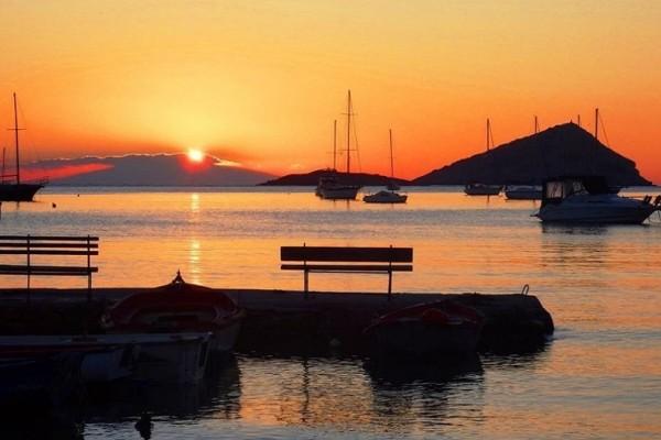 Μια δροσερή όαση στην Αττική για όσους αναζητούν χαλάρωση, διασκέδαση και καλό φαγητό!
