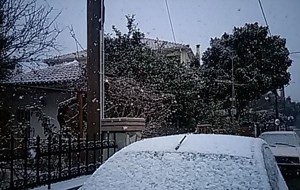 Επέστρεψε ο χειμώνας: Σε ποια πόλη χιονίζει αυτή την στιγμή; (video)