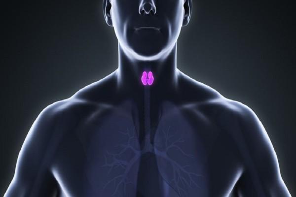 Φερριτίνη και σίδηρος: Πώς συνδέονται με τον θυρεοειδή;