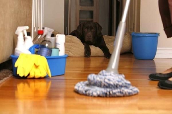 Δείτε πώς μπορείτε να καθαρίσετε το σπίτι σας σε 15 λεπτά