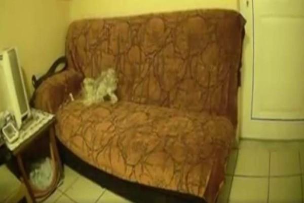 Ενδοσκόπηση στο κολαστήριο της Δάφνης: Βίντεο από το σπίτι του διεστραμμένου 52χρονου! (Video)