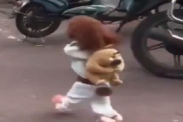 Ο σκύλος που έχει γίνει viral - Δείτε γιατί όμως (Video)