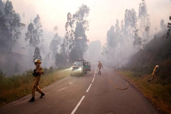 Πορτογαλία: Στους 64 νεκρούς ανέρχεται ο τραγικός απολογισμός από τη φωτιά!