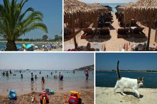 Χαμός στις παραθαλάσσιες περιοχές της Αττικής: Ο καύσωνας οδήγησε στις παραλίες! (photos)