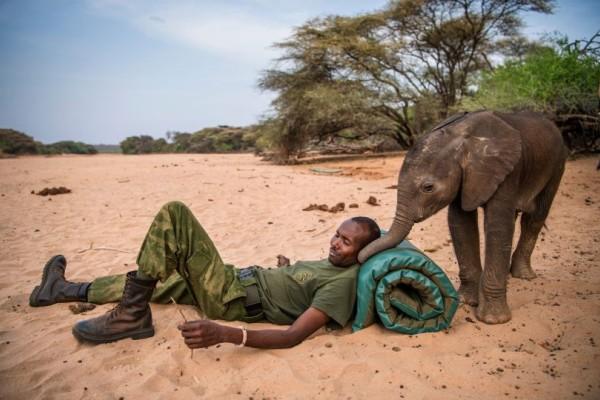 Η φωτογραφία της ημέρας: Οι δεσμοί φιλίας ανάμεσα σε έναν άνθρωπο και έναν ελέφαντα!