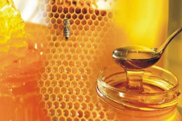 Σάλος: Δεν φαντάζεστε από που προέρχεται το μέλι που τρώμε και μας το παρουσιάζουν για ελληνικό! (photo)
