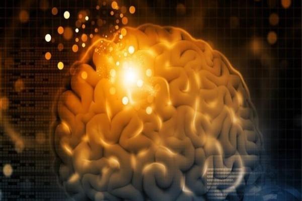 Δείτε πώς ο εγκέφαλός μας αναγνωρίζει πρόσωπα!