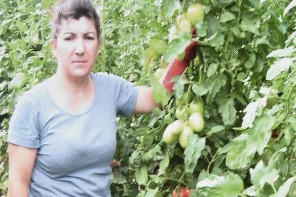 Σεισμός στη Λέσβο: Στην τελευταία της κατοικία κάτω από βαθιά οδύνη η Ελένη Βαλελή!