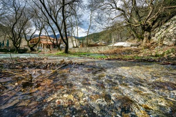 Πλανήτερο: Το μαγευτικό πλατανόδασος της Ελλάδας που θυμίζει σκηνές από... παραμύθι! (Photos)