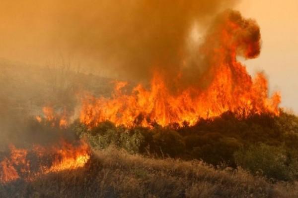 Ισχυρή πυρκαγιά στο Κρυονέρι Αττικής!