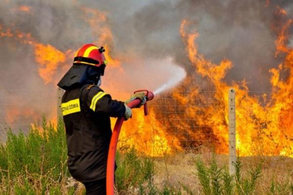 Παίρνει διαστάσεις η πυρκαγιά στο Κρυονέρι: Μάχη από αέρος δίνουν 4 αεροσκάφη!