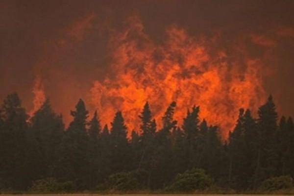 Μεγάλη πυρκαγιά στην Αγία Ειρήνη στην Κεφαλονιά!