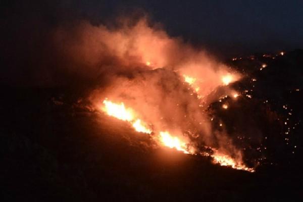 Μαίνεται η πυρκαγιά στο Λαγονήσι: Έφτασε στα σπίτια - Αγωνιούν οι κάτοικοι!