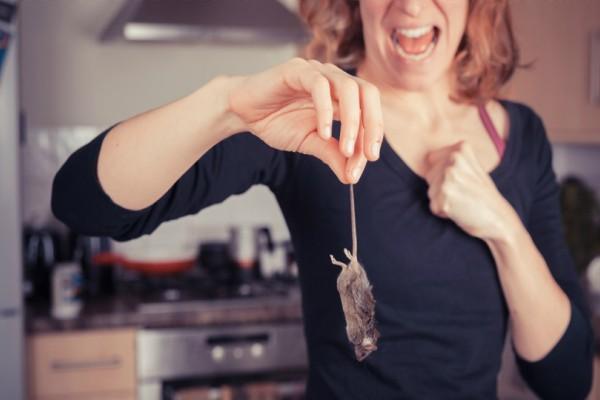 Αυτός είναι ο τρόπος για να απαλλαγείς από τα τρωκτικά στο σπίτι σου!