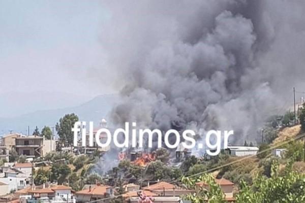 Τραγικές στιγμές στο Αίγιο: Στάχτη έγιναν 8 κοντέινερ στον καυταυλισμό σεισμοπλήκτων! (Photos)