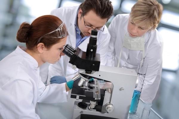 Έρχεται το βυσσινί ρύζι να θεραπεύσει τον καρκίνο! - Τι αναφέρει νέα έρευνα