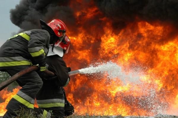Μεγάλη πυρκαγιά στον Ωρωπό! Συναγερμός στην πυροσβεστική!
