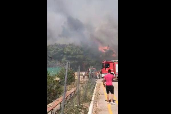 Δείτε βίντεο από την μεγάλη πυρκαγιά στο Κρυονέρι!