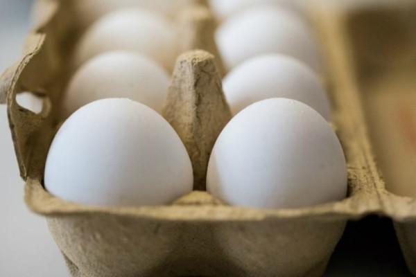 Προσοχή! Αυτές είναι οι 15 χώρες που τρώνε μολυσμένα αυγά στην Ευρωπαϊκή Ένωση!