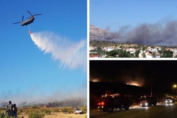 Περιορίστηκε η πυρκαγιά στα Καλύβια: Μάχη με τις αναζωπυρώσεις δίνουν τα καναντέρ (photos)