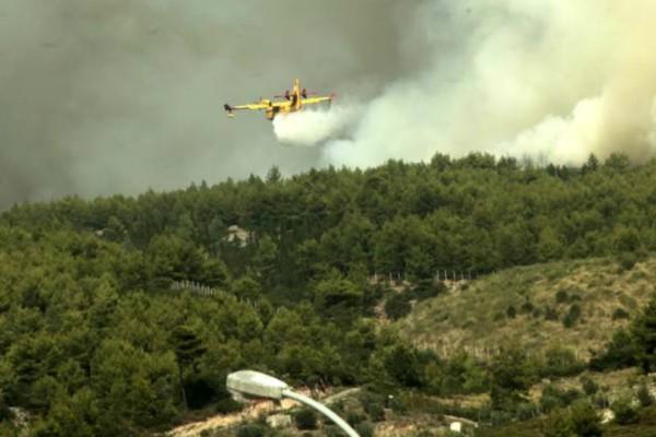 Πως η πυροσβεστική κατάφερε να σβήσει την φωτιά στην Ανατολική Αττική (Photos)