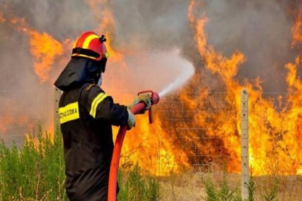 Σε εξέλιξη η φωτιά στη Ναυπακτία