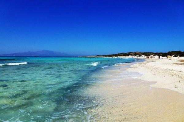 Εικόνες που σε μαγεύουν: Αυτό είναι ακατοίκητο ελληνικό νησί με το μεγαλύτερο φυσικό κεδρόδασος στην Ευρώπη! (Photo)