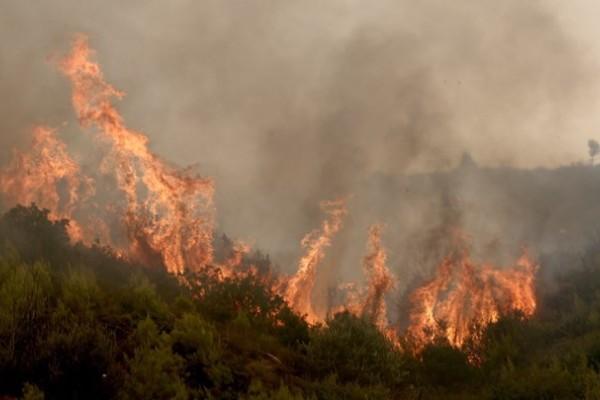 Πύρινη κόλαση η Αττική: Για τρίτη μέρα η φωτιά καίει τα πάντα - Σε απόγνωση κάτοικοι και πυροσβέστες!