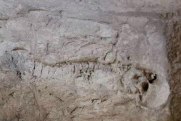 Απίστευτο: Νέα αρχαιολογική ανακάλυψη στη Νεμέα! Βρέθηκαν νέα ευρήματα στις Μυκήνες!