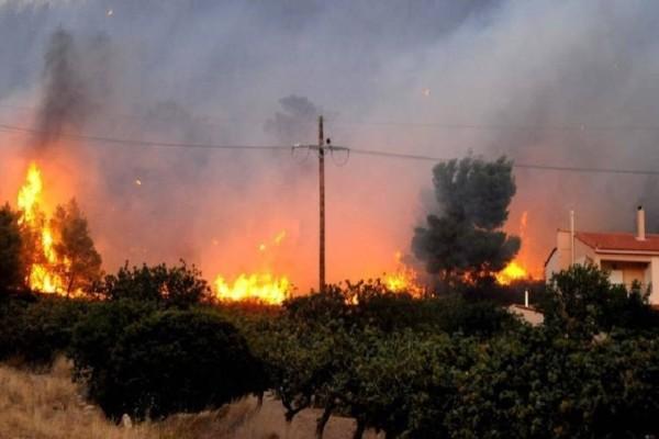 Τεράστιο πύρινο μέτωπο έχει ξεσπάσει σε Βαρνάβα - Καπανδρίτι - Κάλαμο (Photo)