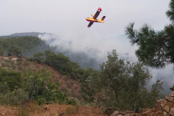 Ισχυρή πυρκαγιά στην Λέσβο! Μεγάλη μάχη με τις φλόγες