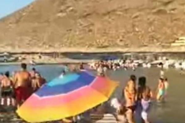 Χαμός σε παραλία στα Χανιά -Εμφανίστηκε φίδι μισού μέτρου (video)