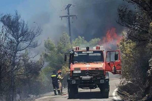 Η φωτιά στις Σπέτσες έκαψε μια ολόκληρη παραλία -  Ελιωσαν ομπρέλες και ξαπλώστρες (Photos)