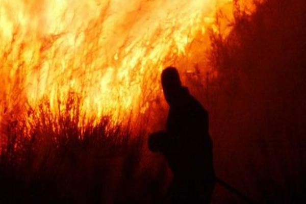 Συναγερμός στην Κέρκυρα! Εμπρηστής συνελήφθη μόλις έβαλε φωτιά