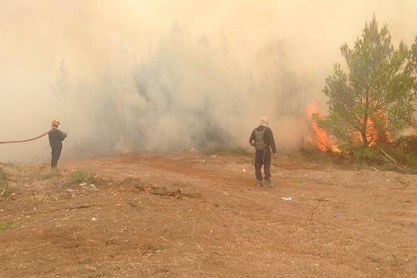 Μάχη με τις φλόγες στο Καπανδρίτι για 3η μέρα: Φόβοι για τις συνεχείς αναζωπυρώσεις!