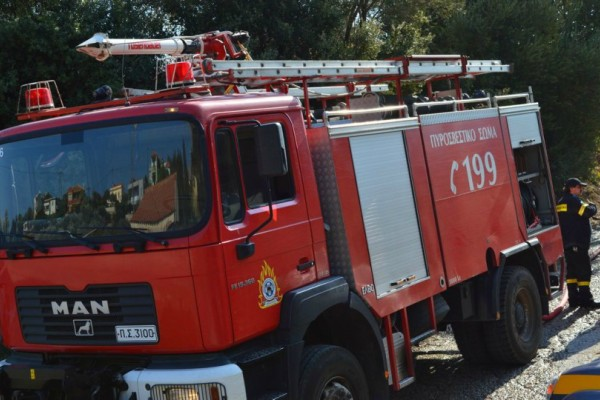 Επίδαυρος: Μεγάλη πυρκαγιά ξέσπασε σε δασική περιοχή - Κάτοικοι προσπαθούν να τη σβήσουν!