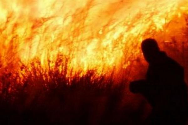 Ομολογία - σοκ από εμπρηστή! «Έβαζα φωτιές γιατί μου άρεσε να βοηθάω στην κατάσβεσή τους»