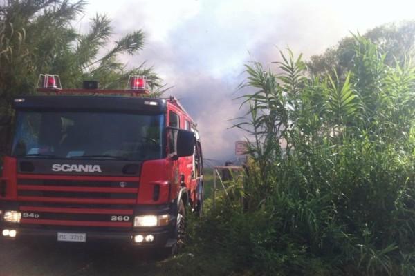 Ίλιον: Yπό μερικό έλεγχο η φωτιά - Και άλλα οχήματα της πυροσβεστικής σπεύδουν στο σημείο!