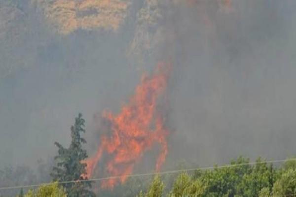 Video από την πυρκαγιά στα Καλύβια αποκαλύπτει την τεράστια έκτασή της: Πλάνα μέσα από ελικόπτερο Σινούκ!