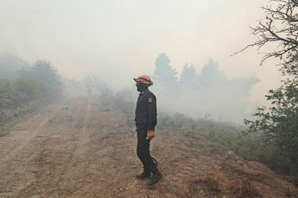 Δεν μπορούν να ελέγξουν την φωτιά στον Βαρνάβα - Συνεχείς οι αναζωπυρώσεις στο μέτωπο των 25χλμ! (Photos+video)