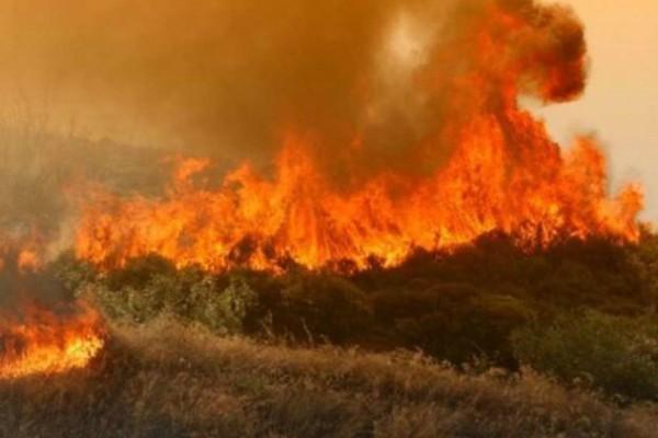 Εκτός ελέγχου οι φωτιές στην Ζάκυνθο! Τραγική η κατάσταση στο νησί!