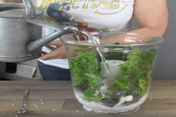 Έριξε νερό σε ένα κηροπήγιο - Το αποτέλεσμα θα σας αφήσει άφωνους! (video)