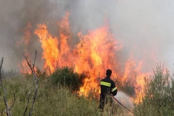 Μεγάλη φωτιά στο Γιαννισκάρι Αχαΐας