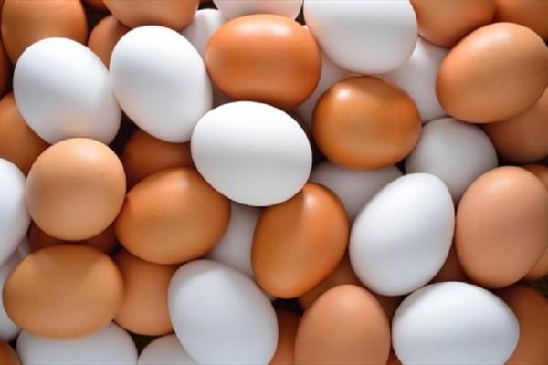 Εσείς αναρωτηθήκατε ποτέ τι διαφορά έχουν τα καφέ αυγά από τα άσπρα;