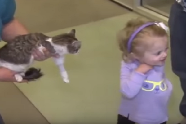Κοριτσάκι με ένα χέρι συναντάει μια γάτα με... τρία πόδια! Η αντίδραση της θα σας συγκινήσει (video)