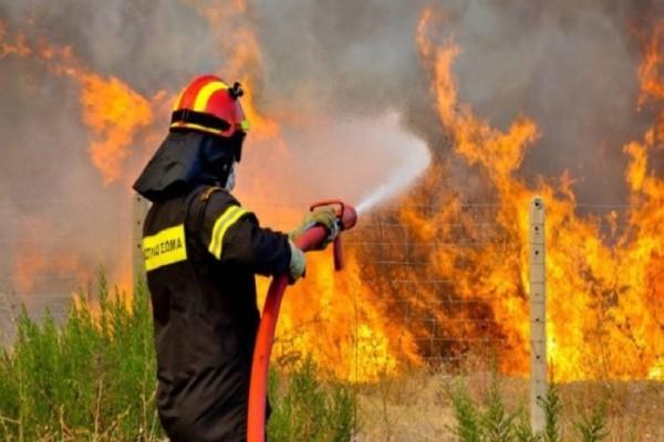 Καβάλα: Καίγεται για δεύτερη συνεχόμενη μέρα δασική έκταση της περιοχής