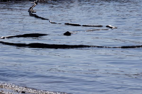 Κάτι.... βρωμάει στην υπόθεση με την πετρελαιοκηλίδα στο Σαρωνικό! - Έγγραφο-ντοκουμέντο για λαθρεμπόριο καυσίμων από τον ιδιοκτήτη του Αγία Ζώνη ΙΙ