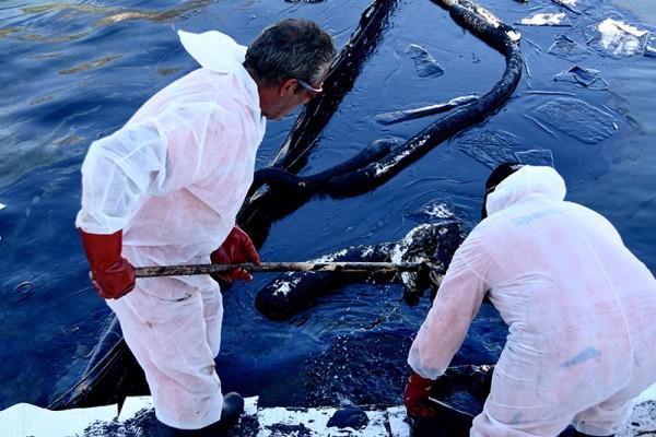 Δυσάρεστα τα νέα από την πετρελαιοκηλίδα στη Σαλαμίνα: Έφτασε στην Φρεαττύδα!