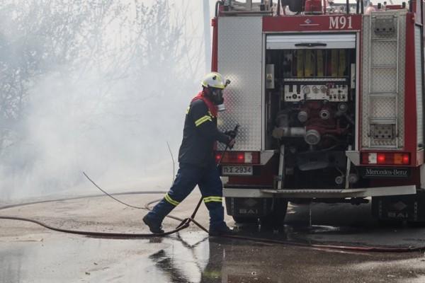 Ζάκυνθος: Φωτιά σε δασική περιοχή του νησιού!